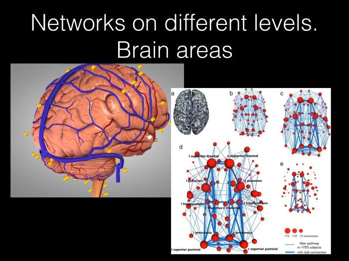 Исследование связности в мозге на основе электрофизиологических данных. Лекция в Яндексе - 4