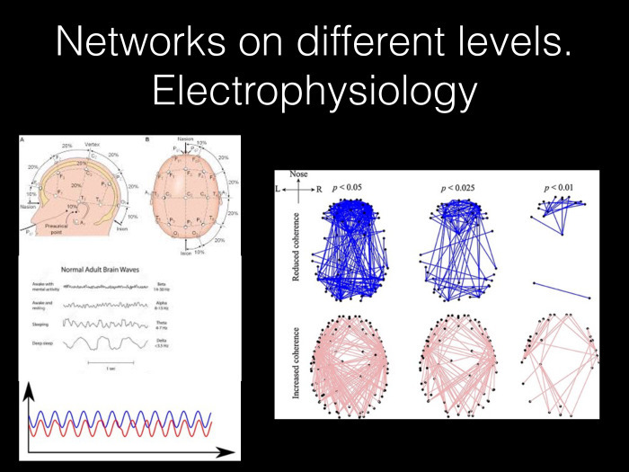 Исследование связности в мозге на основе электрофизиологических данных. Лекция в Яндексе - 5