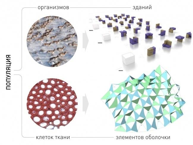 Может ли компьютер думать за архитектора, или Что такое параметрическое проектирование - 4