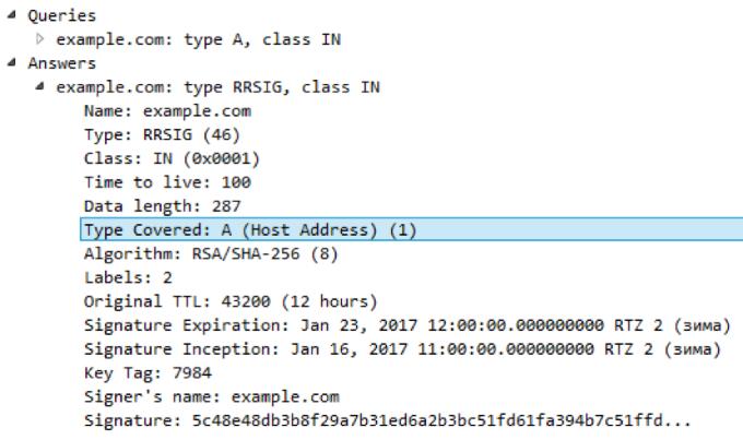 Уязвимость BIND позволяет «уронить» любой сервер: как и почему это работает - 3