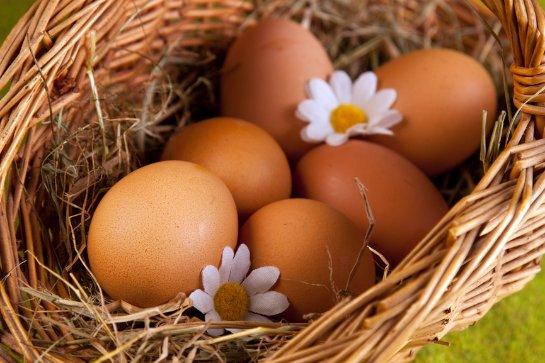 Куриные яйца помогают предотвратить инсульт