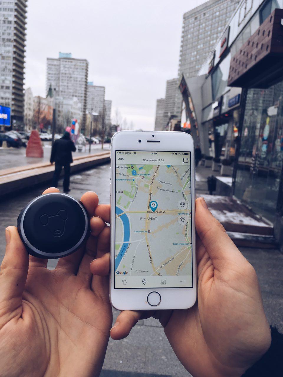 Тестируем на животных: как работает GPS-трекер для собак Mishiko в Москве? - 5
