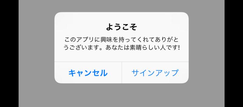 Руководство по локализации для iOS - 14