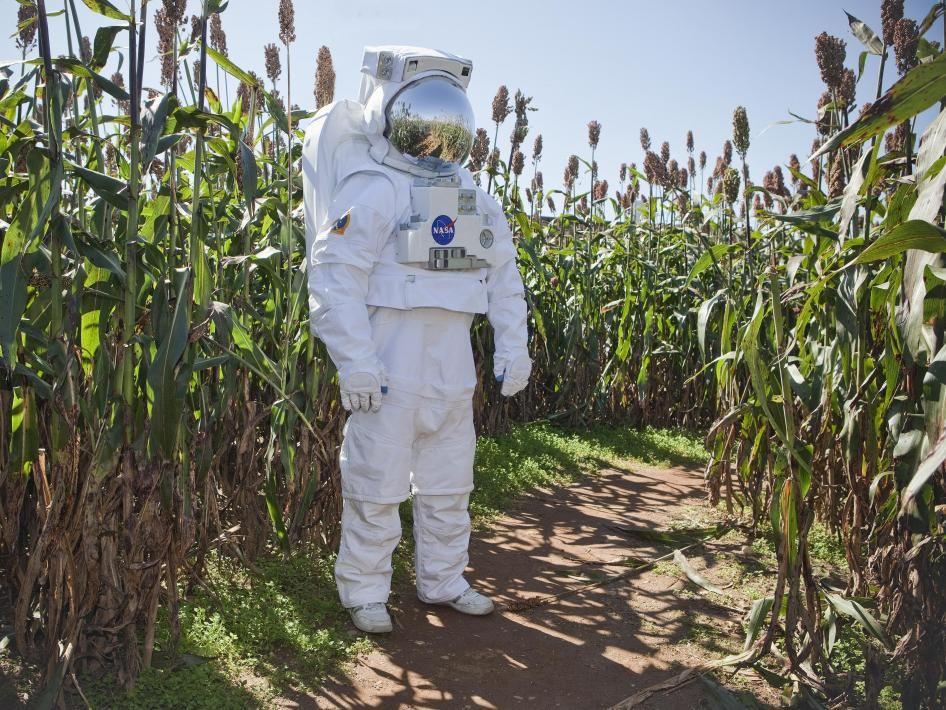 Овощи для астронавтов: как растят свежую зелень в лабораториях НАСА - 4