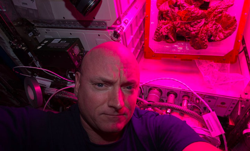 Овощи для астронавтов: как растят свежую зелень в лабораториях НАСА - 1