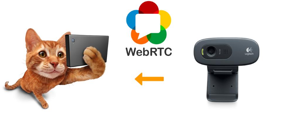 Развертывание многопользовательской WebRTC трансляции с web-камеры через сервер за 3 минуты - 1