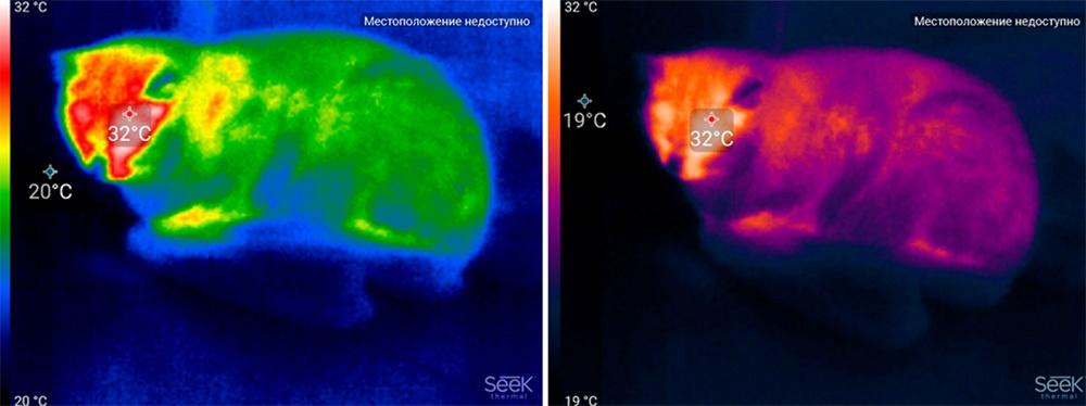 Обзор тепловизора Seek Thermal и его применение - 47
