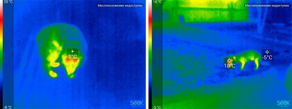 Обзор тепловизора Seek Thermal и его применение - 48