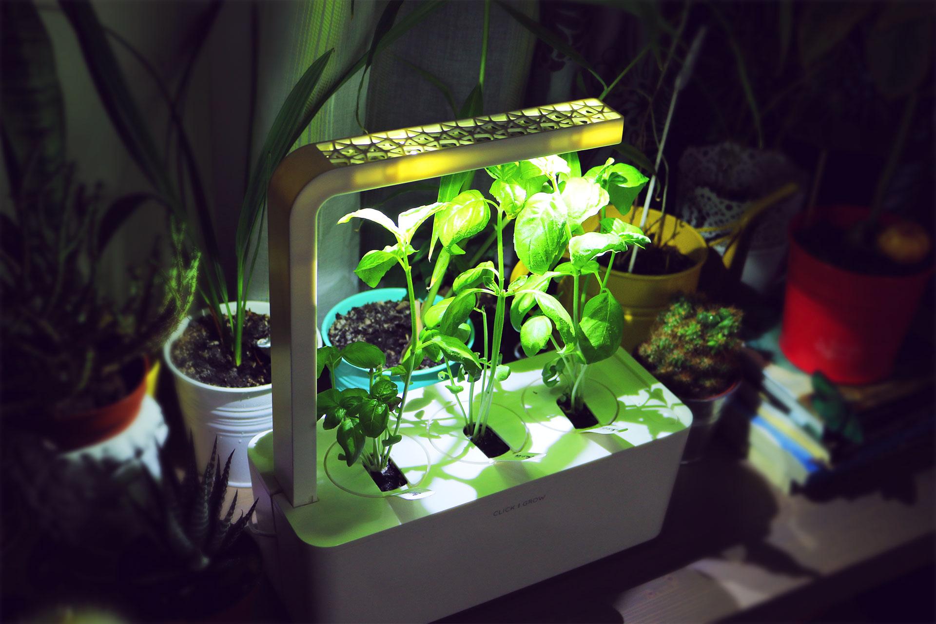 Портативный огород Click and Grow. Выращиваем зелень дома или в офисе круглый год - 9