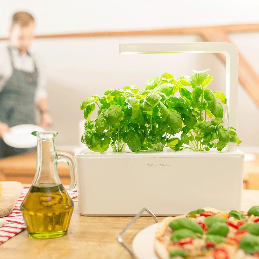 Портативный огород Click and Grow. Выращиваем зелень дома или в офисе круглый год - 1