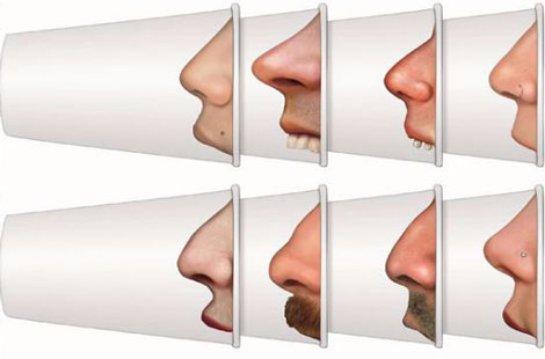 Климат влияет на форму и размер человеческого носа