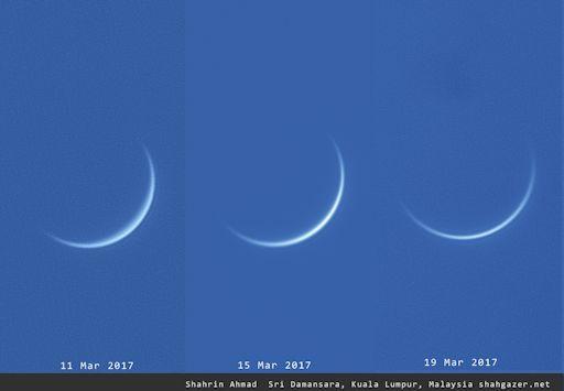 Неделя Венеры в северном полушарии - 7