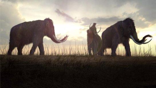 Давно вымершие виды ставят в очередь на воскрешение