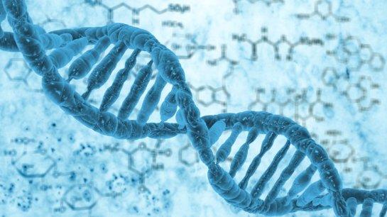 NASA попытается разгадать тайну изменения человеческой ДНК в космосе