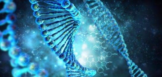 Код операционной системы записали в молекулу ДНК