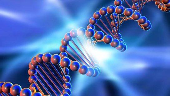 Учёные доказали возможность создания компьютеров на основе ДНК