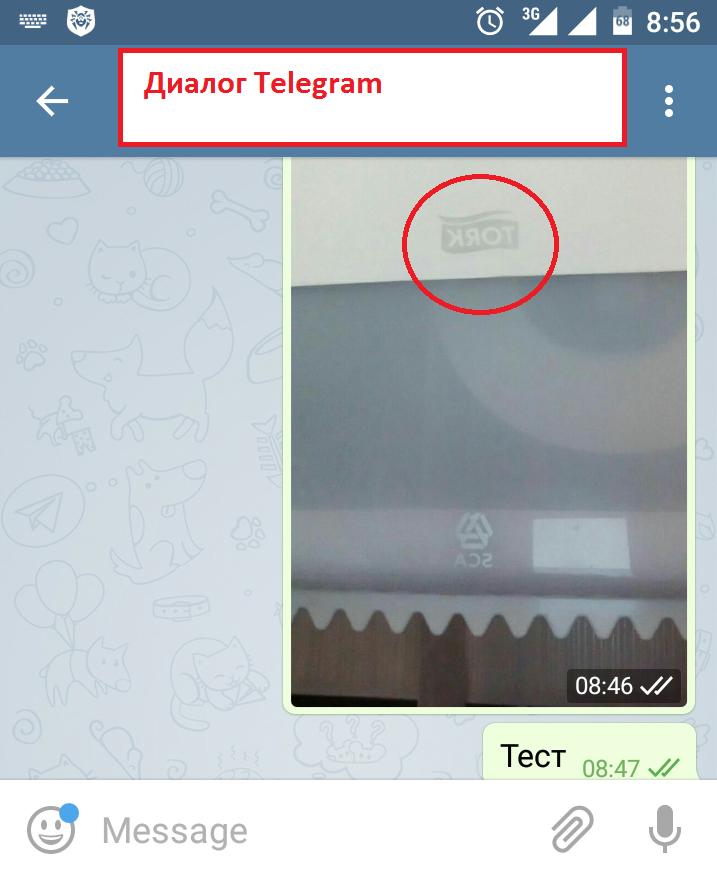 WhatsApp, Telegram и фронтальная камера: как оно работает, как должно работать и еще немного про переписку с саппортом - 4