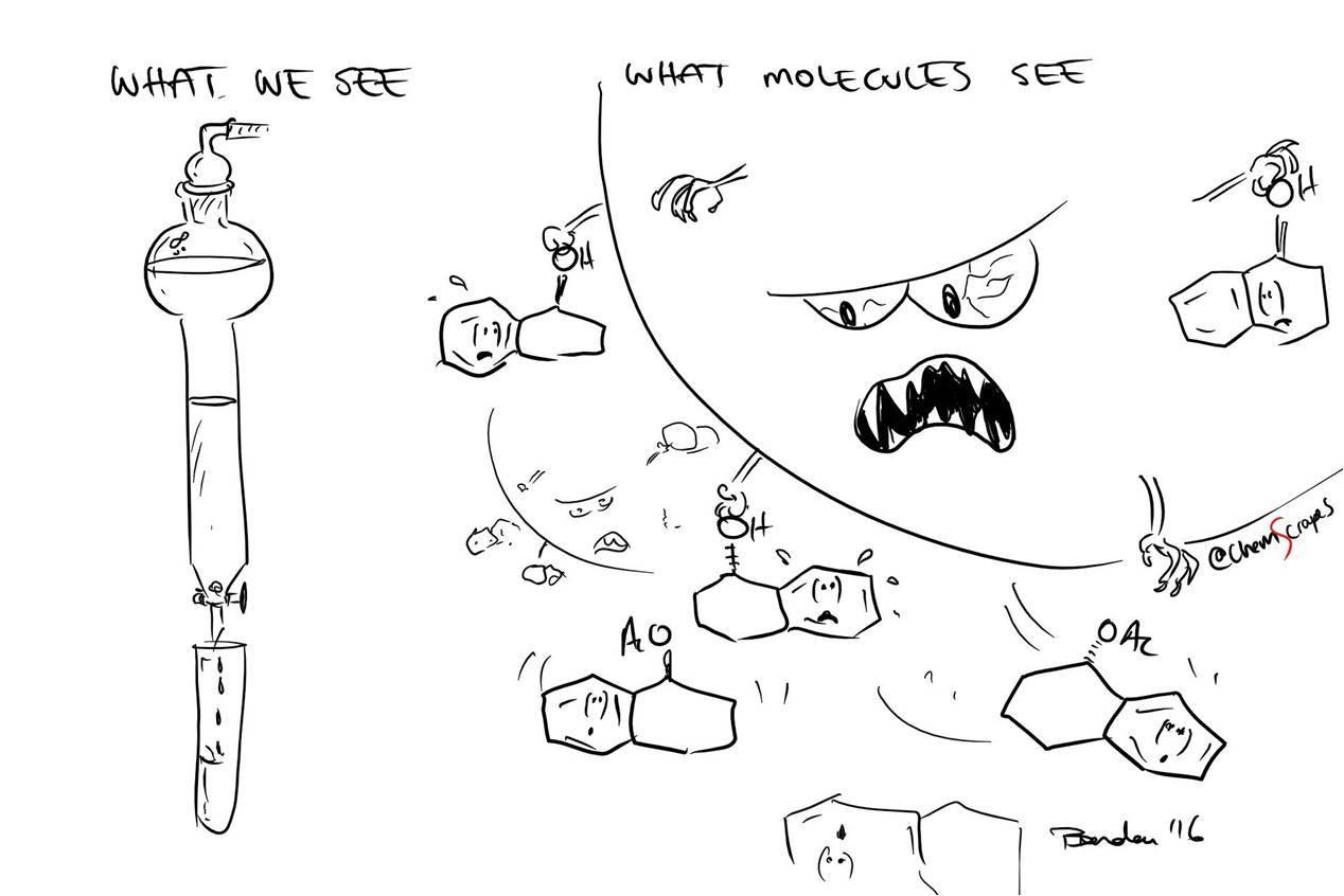Генная инженерия бактерий: как достать из бактерий нужный нам белок - 1