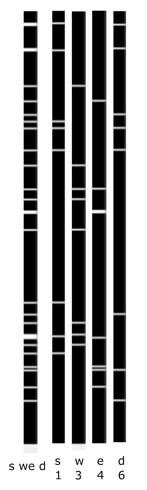 Логика сознания. Часть 12. Поиск закономерностей. Комбинаторное пространство - 4