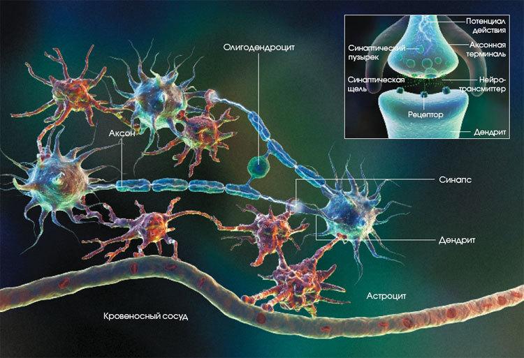 Как лечат сумасшедших. 1.1 — Фармакотерапия: основы и шизофрения - 4