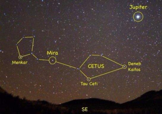 В созвездии Кита нашли планету, условия на которой позволяют жизни существовать