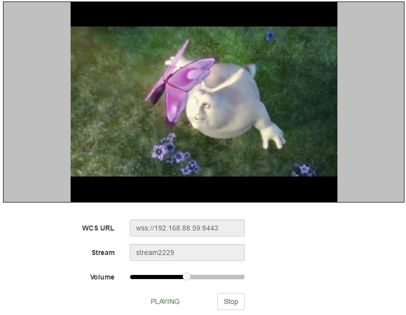 Трансляция RTMP видеопотока из Live Encoder на WebRTC - 10
