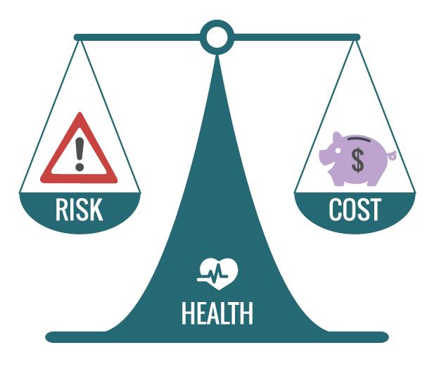 cost_risk_balance