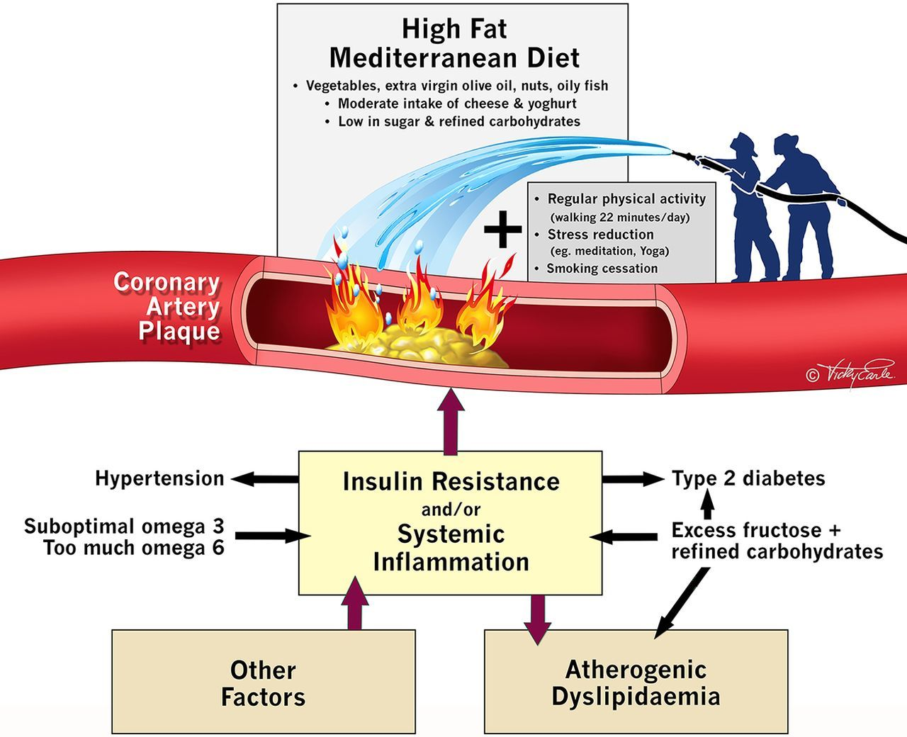 Лженаука. Мясная индустрия пытается убедить общественность в безвредности насыщенных жиров - 2