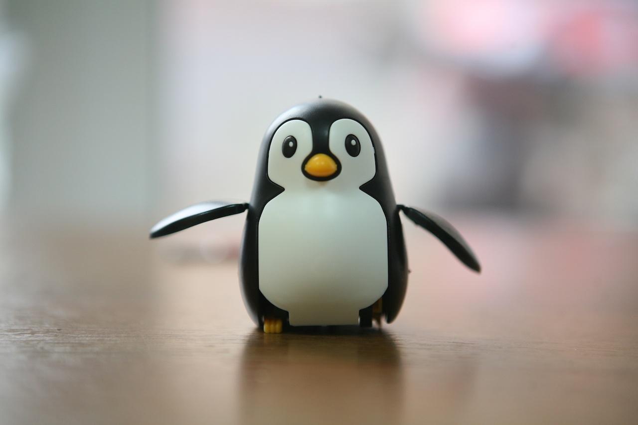 Пингвин на солнечных батареях: забавный конструктор «один в одном» - 11