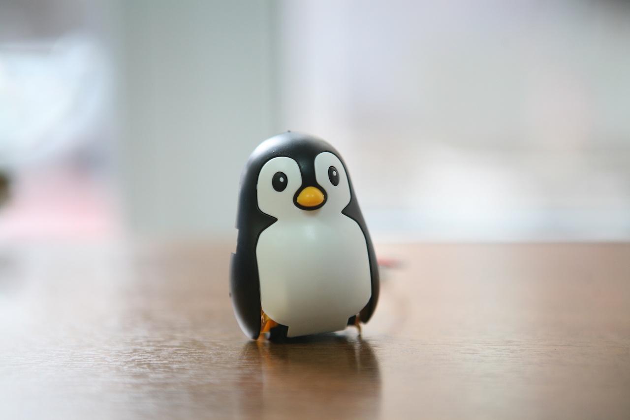 Пингвин на солнечных батареях: забавный конструктор «один в одном» - 9