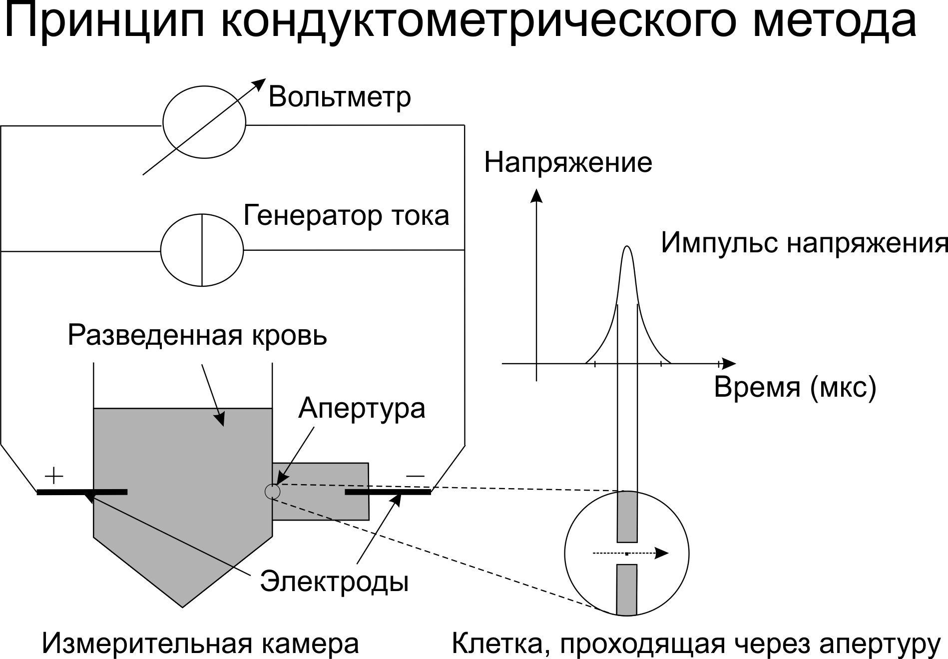 Клинический анализ крови: от светового микроскопа к гематологическим анализаторам - 6