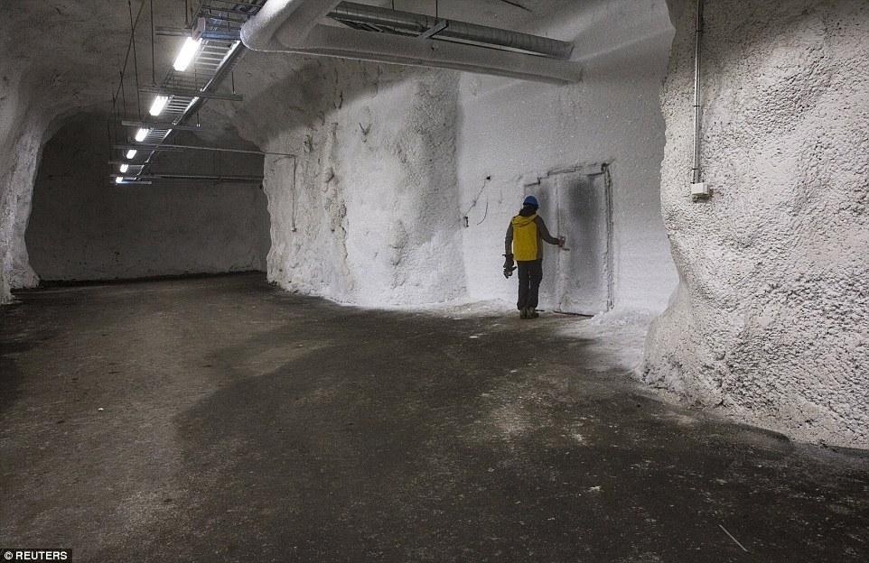 Бункер судного дня в Норвегии с миллионами «архивных» семян затопило из-за таяния вечной мерзлоты - 3