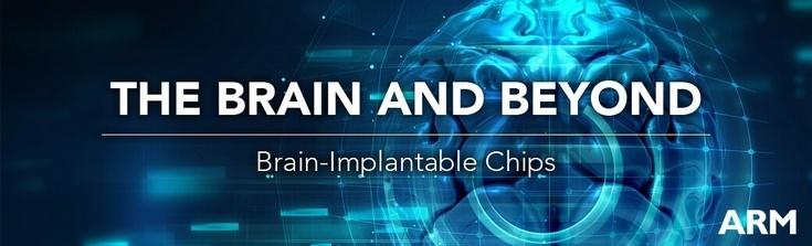 Процессорное ядро Cortex-M0 станет основой для мозговых имплантатов