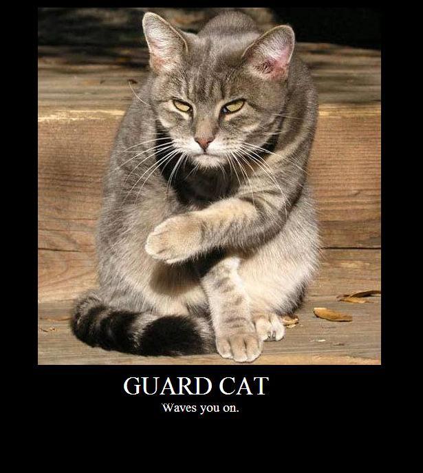 Пишем Guard - 1