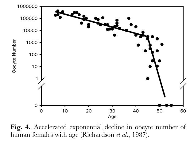 Старение и менопауза — две программы популяционного контроля - 6