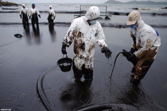 Сибирские ученые создали бактерии, которые способны уничтожать нефть