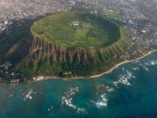 На Гавайях нашли растения, которые считались вымершими