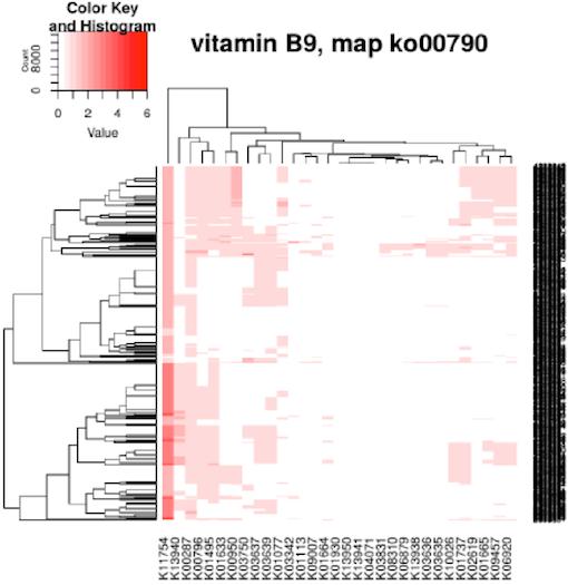 Технологии больших данных в работе с бактериями микробиоты. Лекция в Яндексе - 17