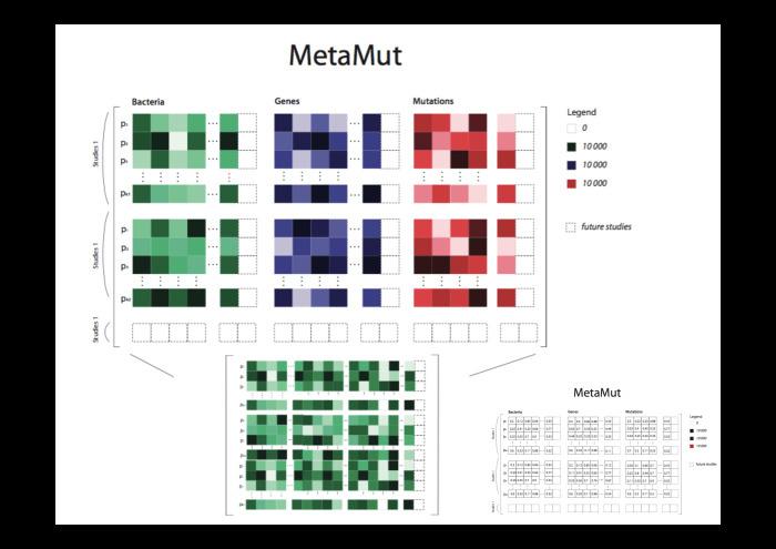 Технологии больших данных в работе с бактериями микробиоты. Лекция в Яндексе - 19