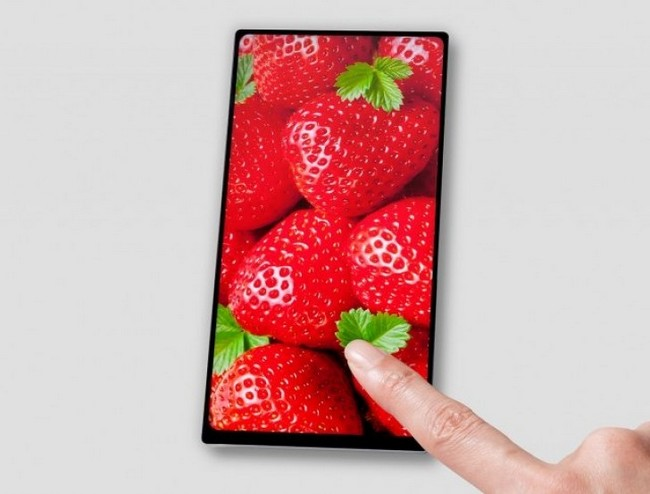 Japan Display начала массовое производство шестидюймовых ЖК-панелей с соотношением сторон 18:9 и узкими рамками