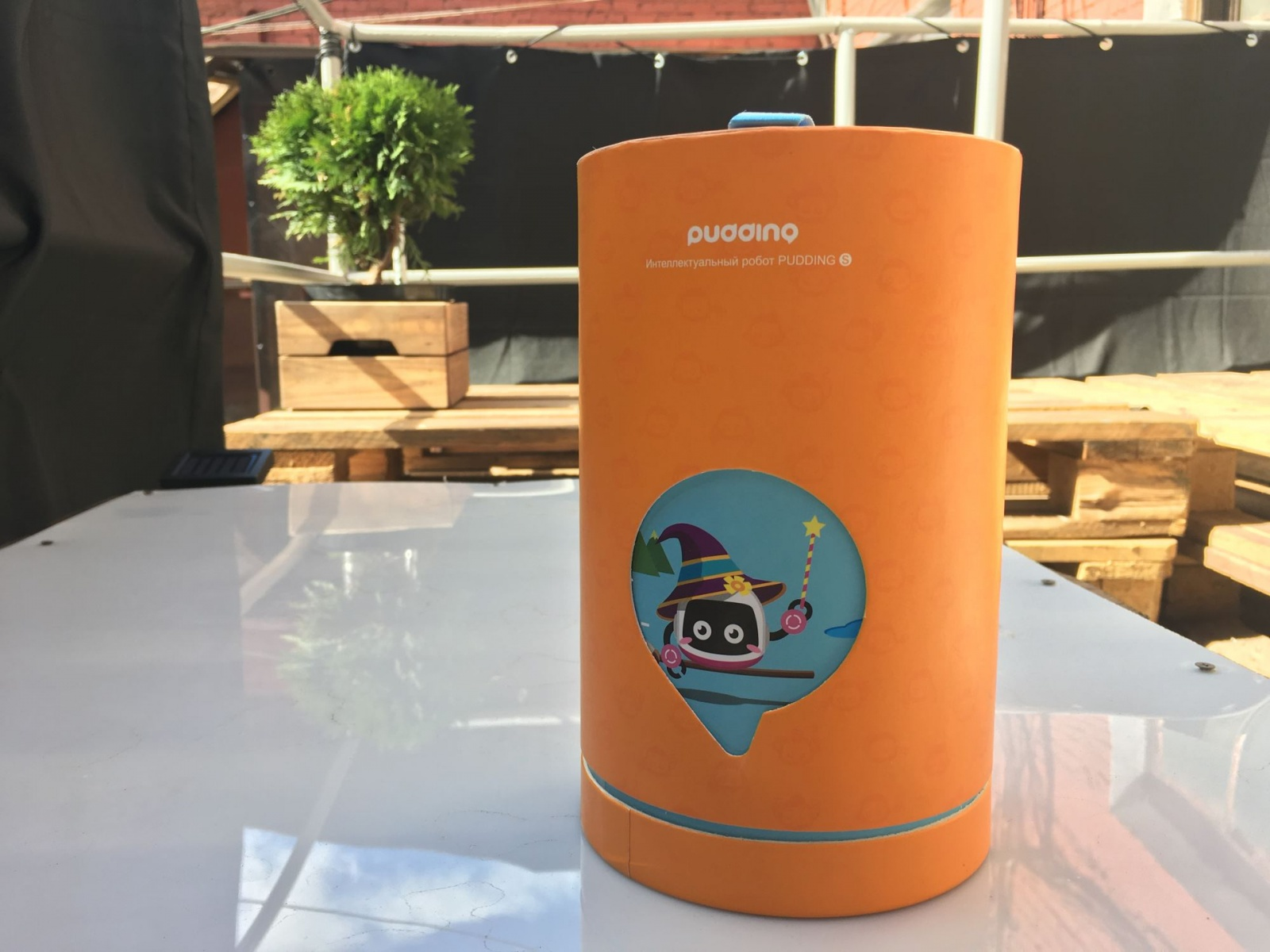 Робот Pudding S — почти универсальный цифровой помощник для ребенка - 2