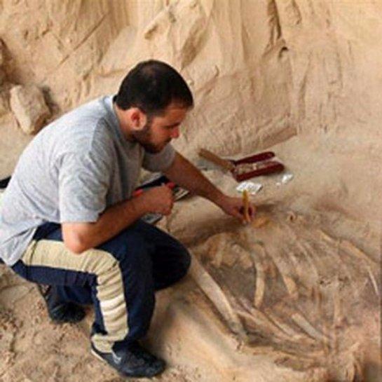 В древнем Египте делали протезы