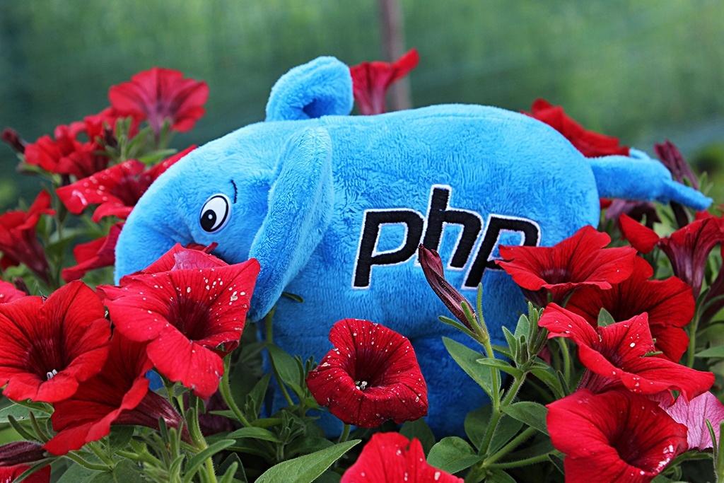 PHP-Дайджест № 111 – свежие новости, материалы и инструменты (12 – 25 июня 2017) - 1