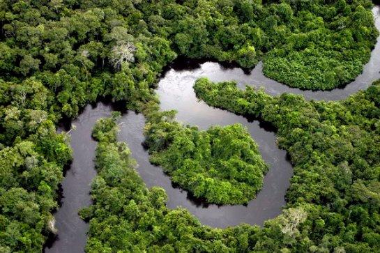 Бассейн Амазонки может исчезнуть