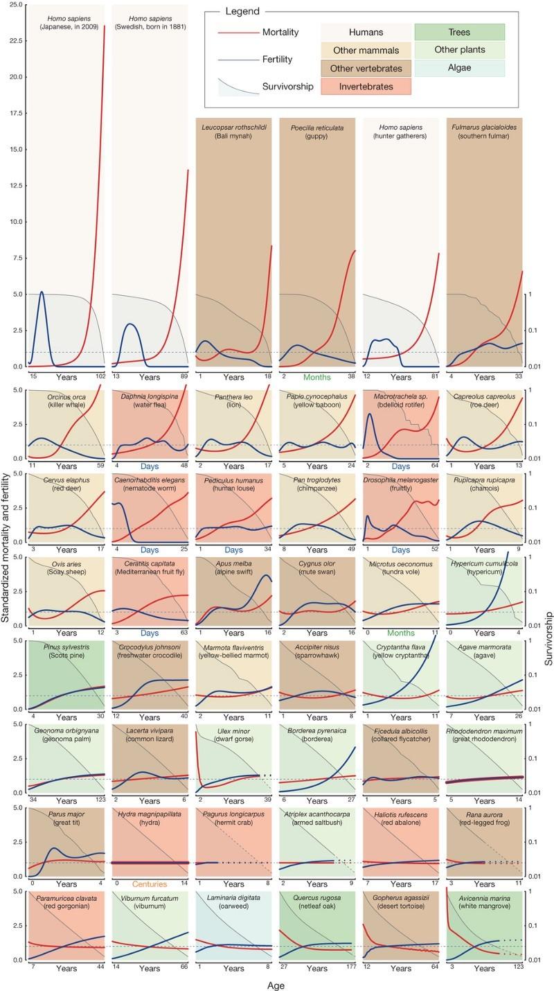Эпигенетические часы и другие биомаркеры старения - 3