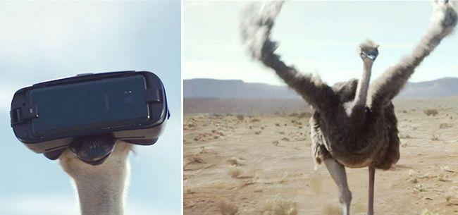 Samsung получила семь «Каннских львов» за рекламу Galaxy S8 и Gear VR