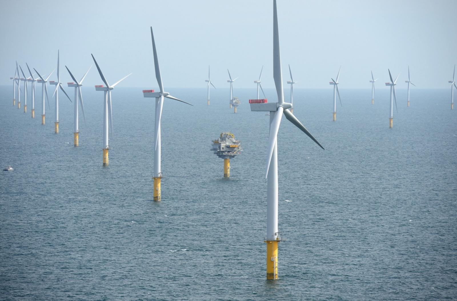 Ветровая энергетика впервые станет прибыльной без субсидий и дешевле атомной энергии - 1