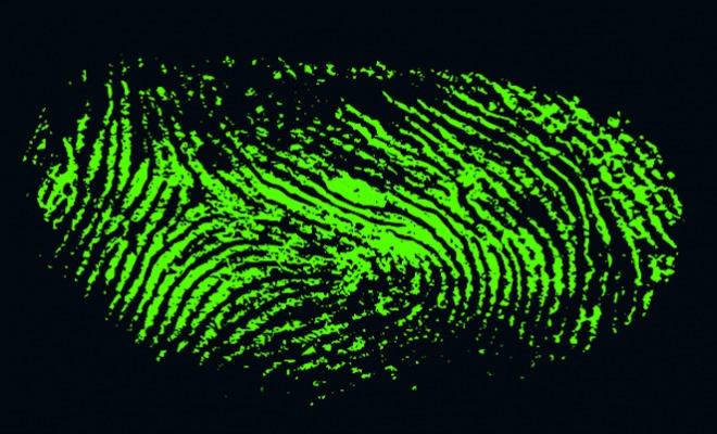 Новые датчики Qualcomm обеспечивают возможность сканирования отпечатков пальцев через дисплей, стекло и металл