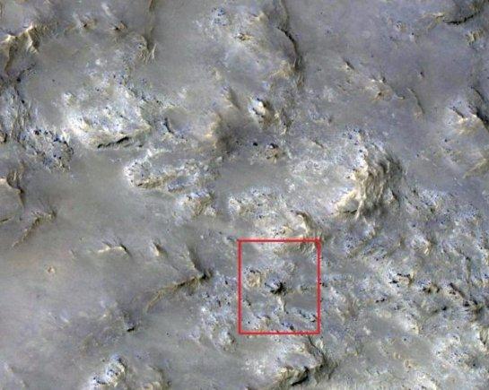 Уфологи заявили о находке на Марсе живого существа