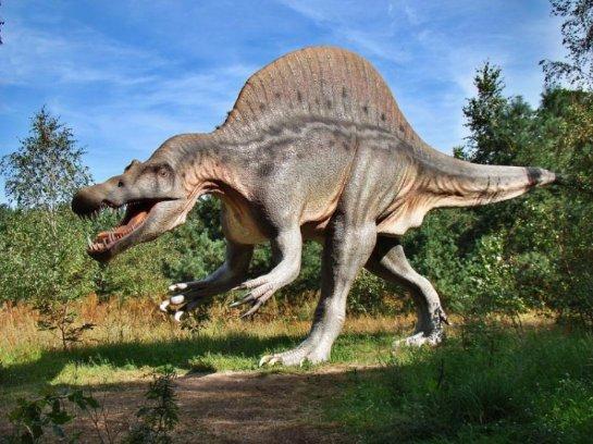 Ученые нашли следы древнего динозавра